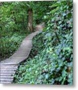 Summer Trail Path Metal Print