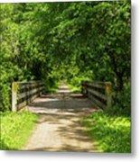Summer Trail Scene 4 A Metal Print