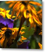 Summer Wanes Metal Print by Ross Powell