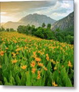 Summer Wildflowers Vertical Metal Print