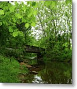 Summer Woodland And The Patapsco River Maryland Metal Print