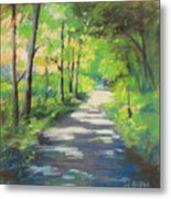 summer woods at Kenoza Lake Metal Print by Leslie Alfred McGrath