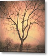 Summerland Light In Winter Metal Print