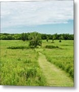 Summer's Day On The Prairie Metal Print