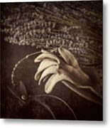 Summer's Grace Metal Print by Amy Weiss