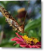 Summer's Sweet Nectar Metal Print