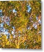 Summertime Tree Metal Print