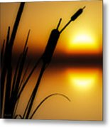 Summertime Whispers  Metal Print