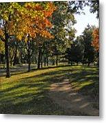 Summit Avenue In The Fall Metal Print