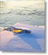 Sun And Ice Metal Print