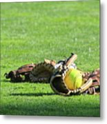 Sun Bathing Metal Print