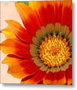 Sun Bloom Of Fire Metal Print
