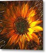 Sun Burst Metal Print