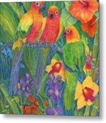 Sun Conure Parrots Metal Print