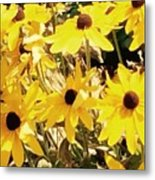 Sun Flower Glory Metal Print