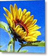 Sun Flower - Id 16235-142812-7136 Metal Print