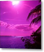 Sun Grape Metal Print