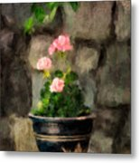 Sun Kissed Pinks Metal Print