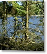 Sun Of The Loch Afternoon. Metal Print