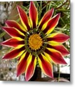 Sun Ray Flower Metal Print