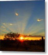 Sun Rays At Sunset With Tree And Saguaro Metal Print