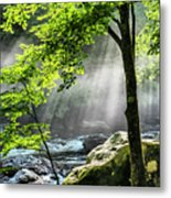 Sun Rays On Williams River  Metal Print