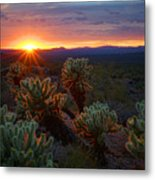 Sun Sets Over The Sonoran  Metal Print
