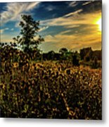 Sun Setting At Valley Forge Metal Print