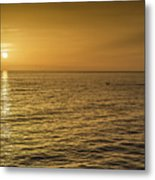 Sun Setting In Barbados Metal Print