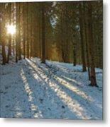 Sun Setting On Winter Woods Metal Print