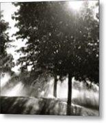 Sun Showers Metal Print
