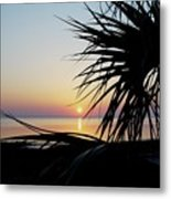 Sun Touched Metal Print