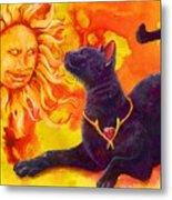 Sun Worshiper Metal Print