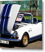 Sunbeam Tiger Metal Print
