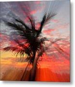 Sunburst Through Palm Tree Metal Print