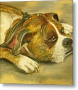 Sunday Arts Fair Dog In A Mood Metal Print by Deborah Willard