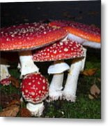 Sunday November 1 2015 Metal Print