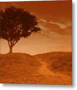Sundown Alone Metal Print