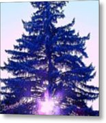 Sundown In The Forest Metal Print
