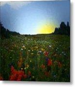Sundown Wildflower Meadow Metal Print