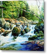 Sunfish Creek Metal Print