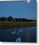 Sunfishes In Moonlight Metal Print