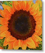 Sunflower 12118-3 Metal Print