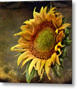 Sunflower Art 2 Metal Print
