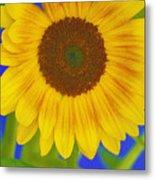 Sunflower Art Metal Print