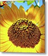 Sunflower Art Prints Orange Yellow Floral Garden Baslee Troutman Metal Print