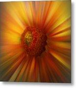 Sunflower Dawn Zoom Metal Print
