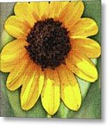 Sunflower Expressed Metal Print