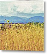 Sunflower Field 2 Metal Print