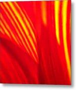 Sunflower Fire 3 Metal Print